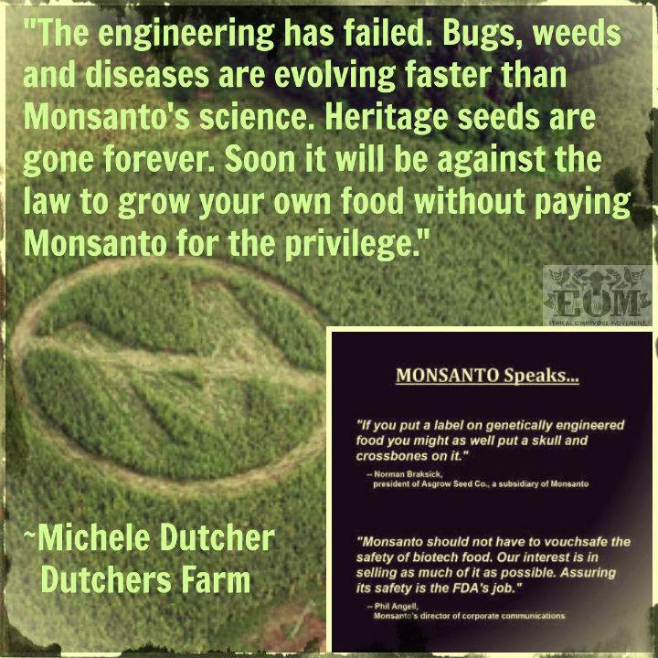 Monsanto and me