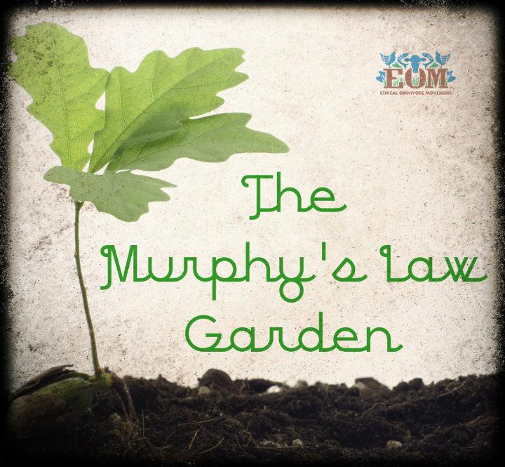 Murphey's law garden