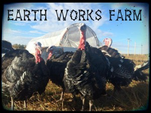 Earth Works turkeys