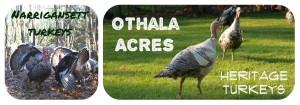 Otholo acres