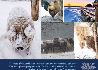 Ethical Omnivore Movement Calendar 2021 - January 2021