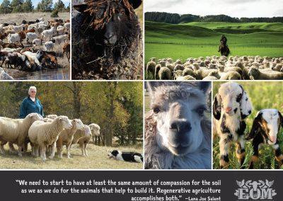 Ethical Omnivore Movement Calendar 2021 - November 2021